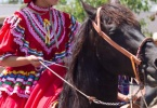 event-4th-of-july-alameda-2013-horse-riders-04