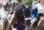 event-4th-of-july-alameda-2013-horse-riders-flag-3