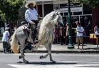 event-4th-of-july-alameda-2013-horse-riders-white-mane-4