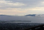 sterling-1079-berkeley-hills-view-daytime-6