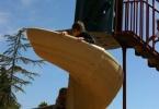 albany-ca-parks-memorial-park-1331-portland-04