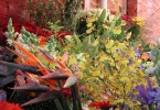 berkeley-ca-elmwood-neighborhood-florist-2936-college-avenue-elmwood-cafe-was-elmwood-blooming-alley-florist-3