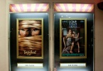 berkeley-ca-elmwood-neighborhood-theater-elmwood-2966-college-avenue-movie-tangled-poster-1