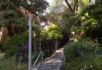 path-berkeley-california-claremont-hills-path-the-cutoff-1