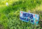 berkeley-california-north-edible-school-yard-signs-martin-luther-king-junior-high-school-1781-rose-street-signs-herb-garden-2