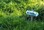 berkeley-california-north-edible-school-yard-signs-martin-luther-king-junior-high-school-1781-rose-street-signs-mint