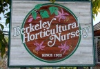 berkeley-ca-northbrae-westbrae-neighborhood-berkeley-horticultural-nursery-1310-mcgee-1