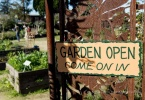 berkeley-ca-northbrae-westbrae-neighborhood-karl-linn-peralta-northside-community-gardens-signs-1