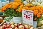 berkeley-ca-northbrae-westbrae-neighborhood-monterey-market-1550-hopkins-fruit-vegetables-11