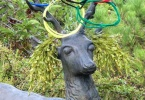 berkeley-ca-thousand-1000-oaks-neighborhood-home-deer-olympic-rings-2