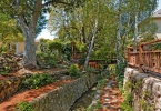 6-sonoma-1840-berkeley-northbrae-thousand-oaks-exterior-yard-3