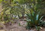 6-berkeley-thousand-oaks-neighborhood-the-alameda-721-garden-08