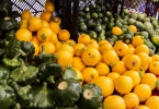 kensington-ca-colusa-circle-the-kensington-farmers-market-oak-view-avenue-produce-3