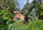 0-milvia-1236-north-berkeley-neighborhood-garden-2