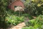 0-milvia-1236-north-berkeley-neighborhood-garden-owners-05