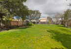 7-posen-1545-berkeley-northbrae-neighborhood-exterior-yard-3