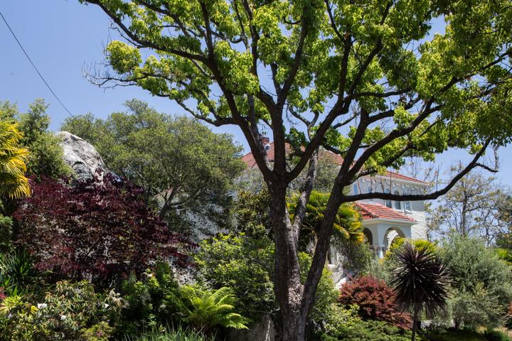 berkeley-ca-thousand-1000-oaks-neighborhood-rocks-home-2