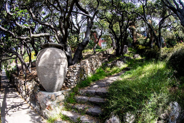 berkeley-ca-thousand-1000-oaks-neighborhood-urn-the-alameda-indian-trail-path-3